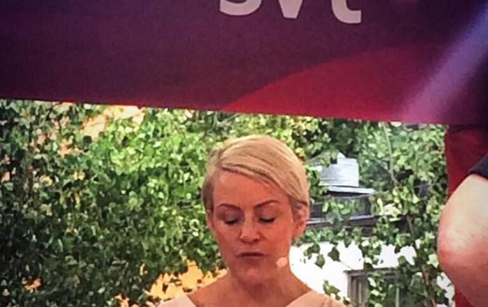 SVT Almedalen